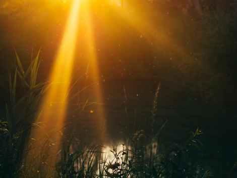 nature-sunset-water-sun.jpg
