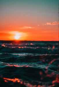 pexels-photo-561463.jpeg