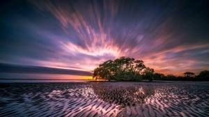 beach cloud formation clouds dawn